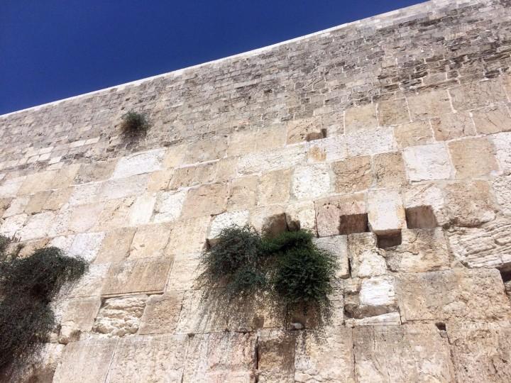 Kótel Hamaharaví, Jerusalén